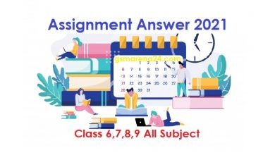 Assignment All Subject Answer